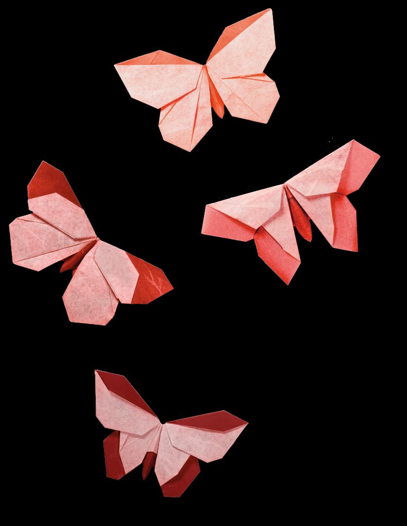 DNA origami - Wikipedia | 1084x838